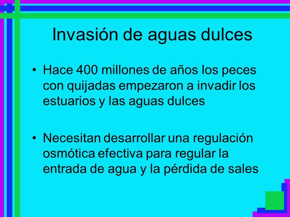 Invasión de aguas dulces