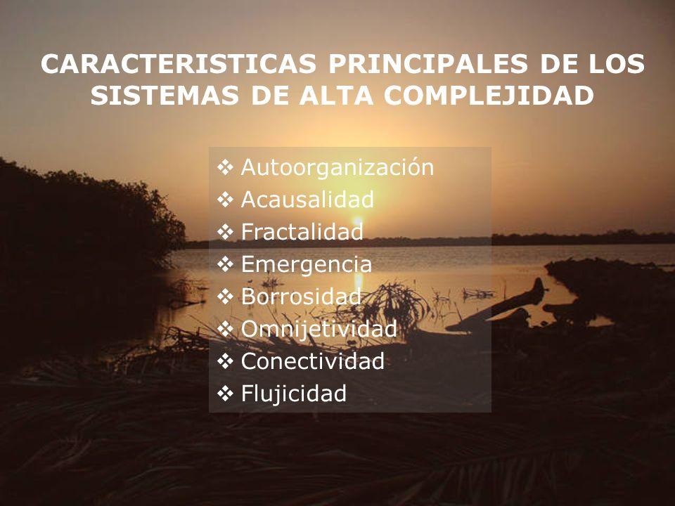 CARACTERISTICAS PRINCIPALES DE LOS SISTEMAS DE ALTA COMPLEJIDAD