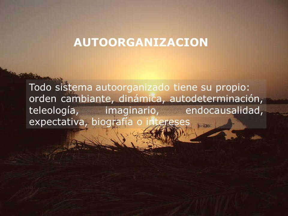 AUTOORGANIZACION Todo sistema autoorganizado tiene su propio: