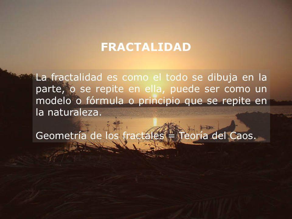 FRACTALIDAD