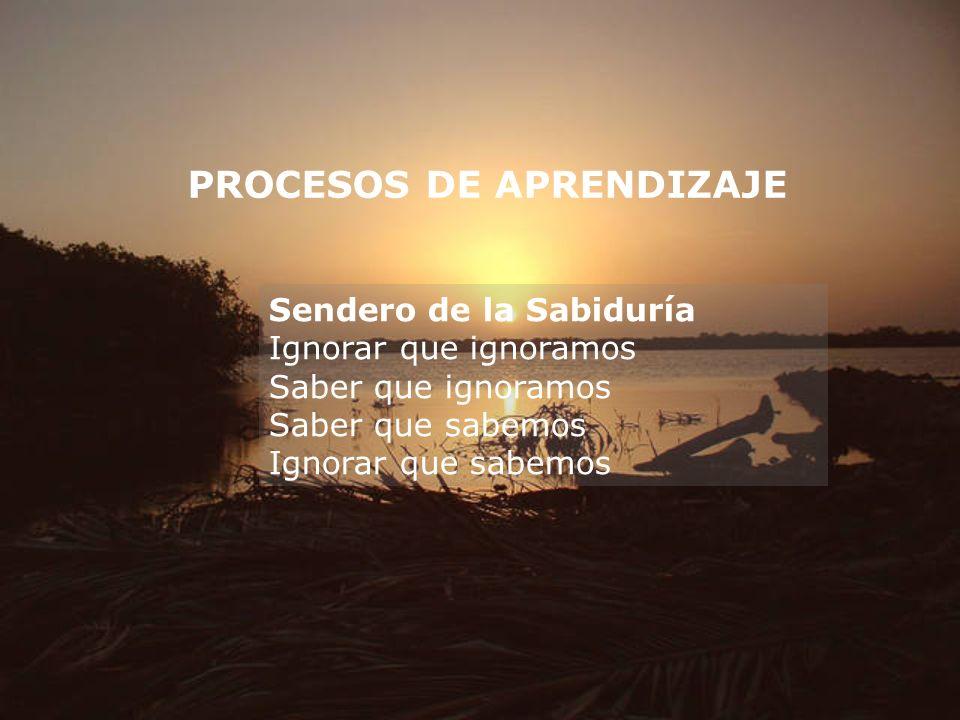 PROCESOS DE APRENDIZAJE