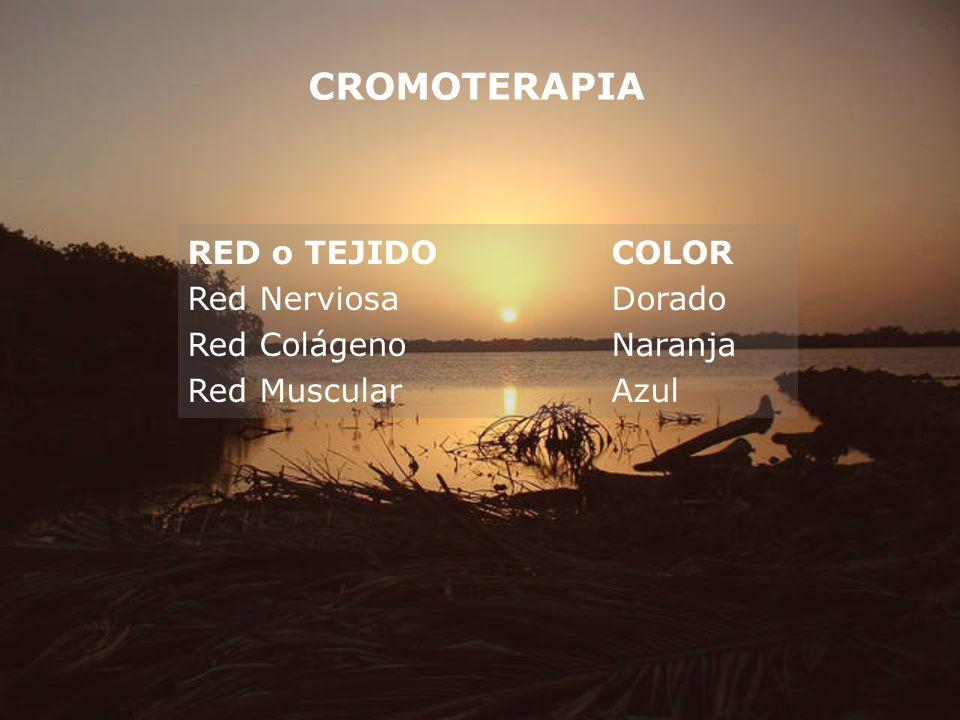 CROMOTERAPIA RED o TEJIDO COLOR Red Nerviosa Dorado