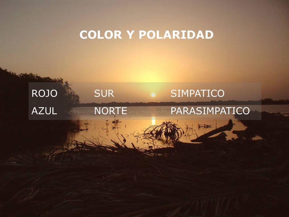 COLOR Y POLARIDAD ROJO SUR SIMPATICO AZUL NORTE PARASIMPATICO