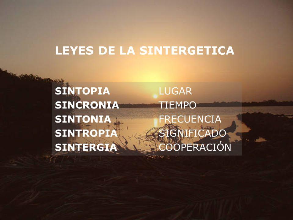 LEYES DE LA SINTERGETICA