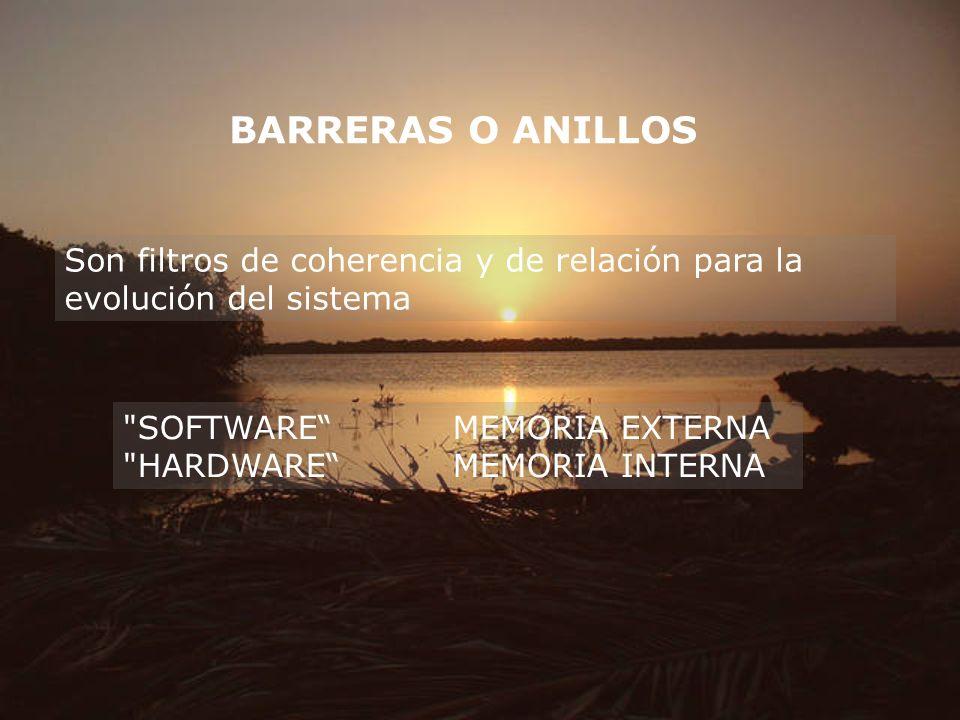 BARRERAS O ANILLOS Son filtros de coherencia y de relación para la evolución del sistema. SOFTWARE MEMORIA EXTERNA.