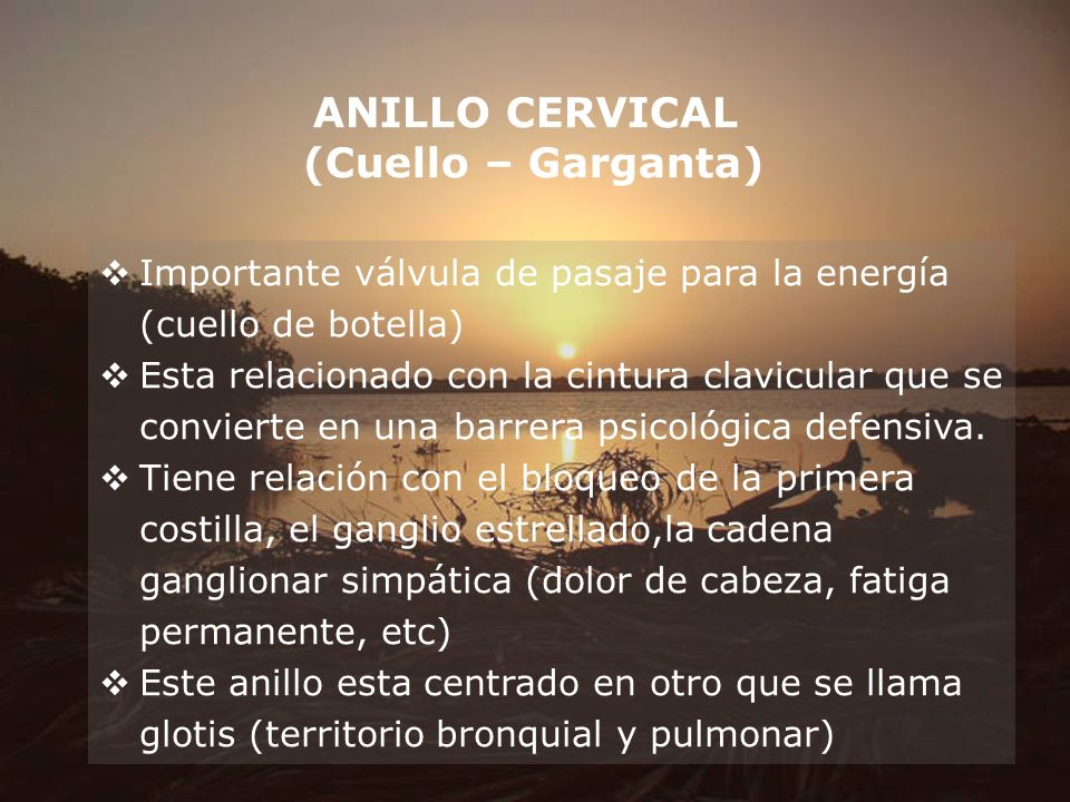 ANILLO CERVICAL (Cuello – Garganta)