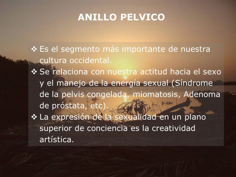 ANILLO PELVICO Es el segmento más importante de nuestra cultura occidental.
