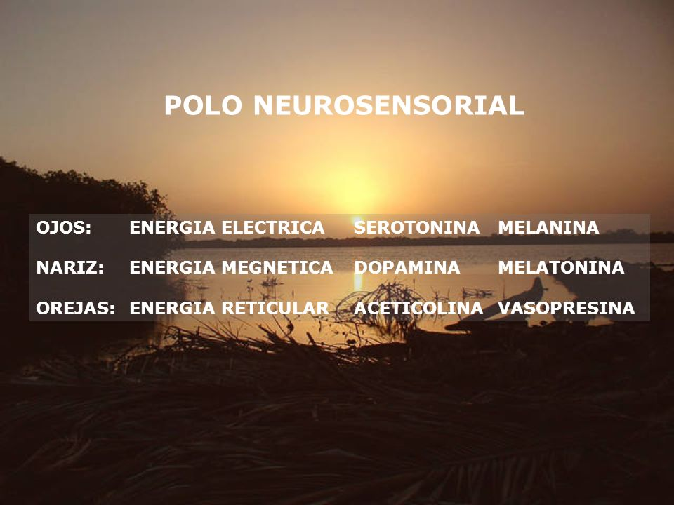 POLO NEUROSENSORIAL OJOS: ENERGIA ELECTRICA SEROTONINA MELANINA