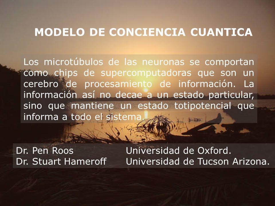 MODELO DE CONCIENCIA CUANTICA