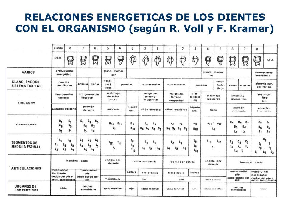 RELACIONES ENERGETICAS DE LOS DIENTES