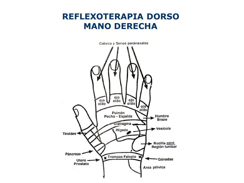 REFLEXOTERAPIA DORSO MANO DERECHA