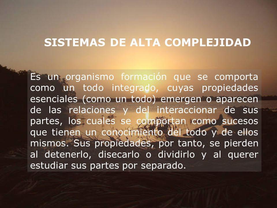 SISTEMAS DE ALTA COMPLEJIDAD