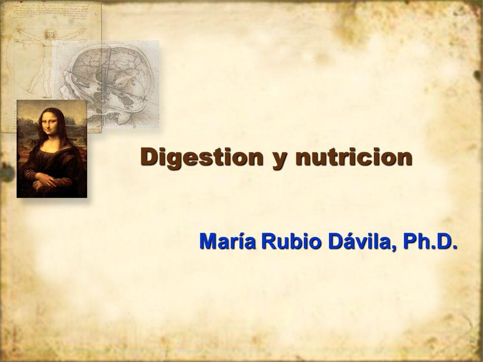 Digestion y nutricion María Rubio Dávila, Ph.D.