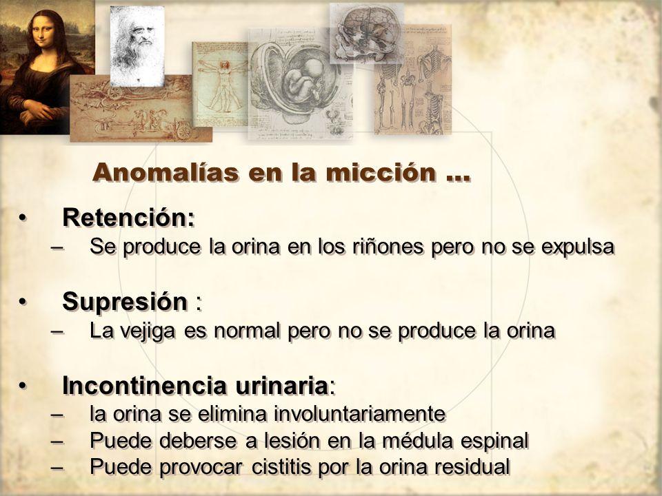 Anomalías en la micción …