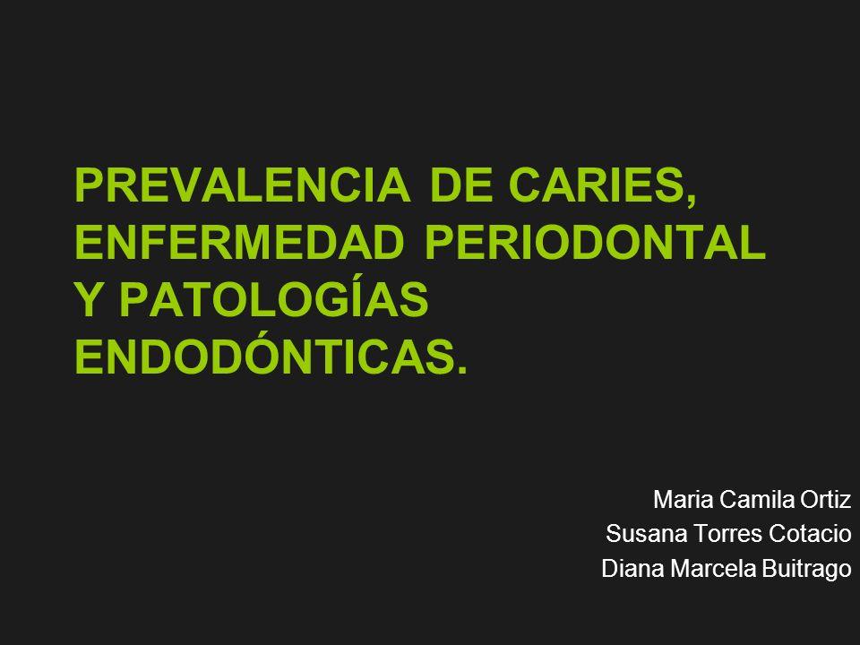 Maria Camila Ortiz Susana Torres Cotacio Diana Marcela Buitrago