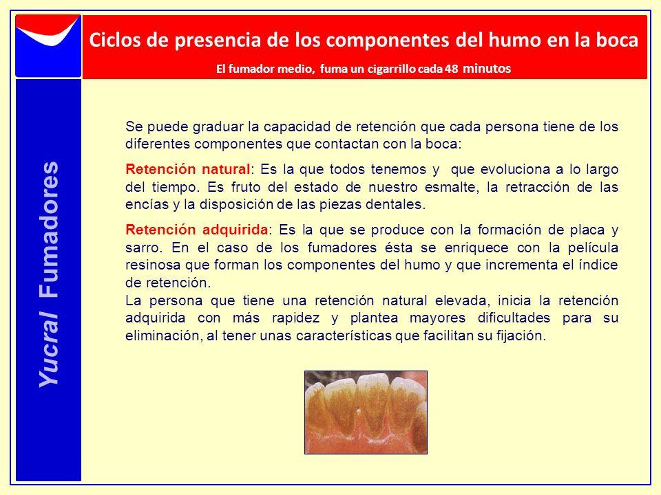 Ciclos de presencia de los componentes del humo en la boca