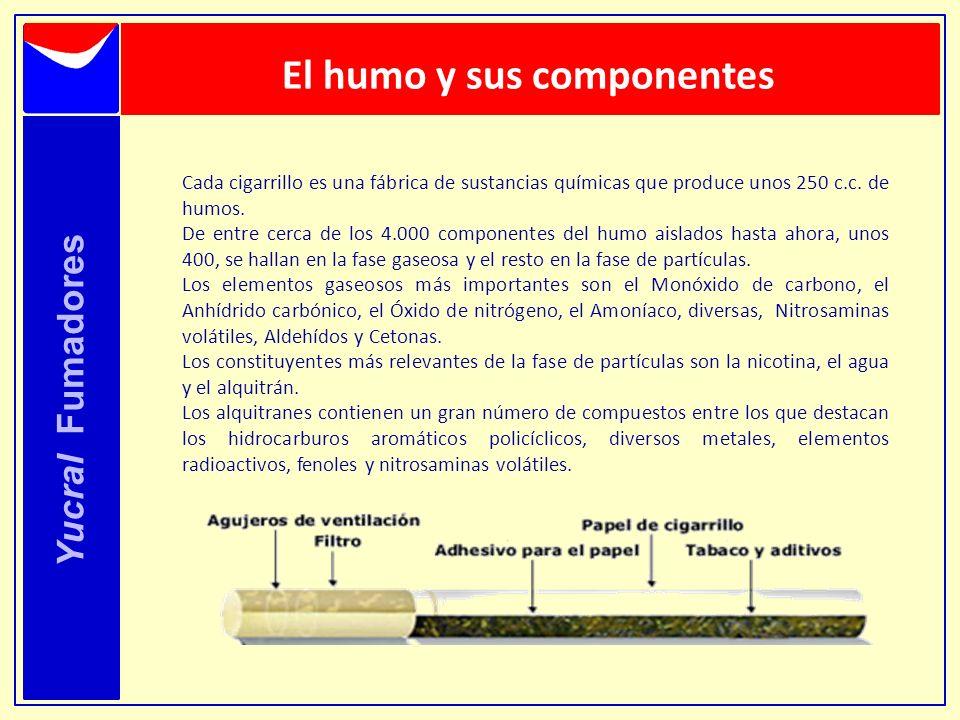 El humo y sus componentes