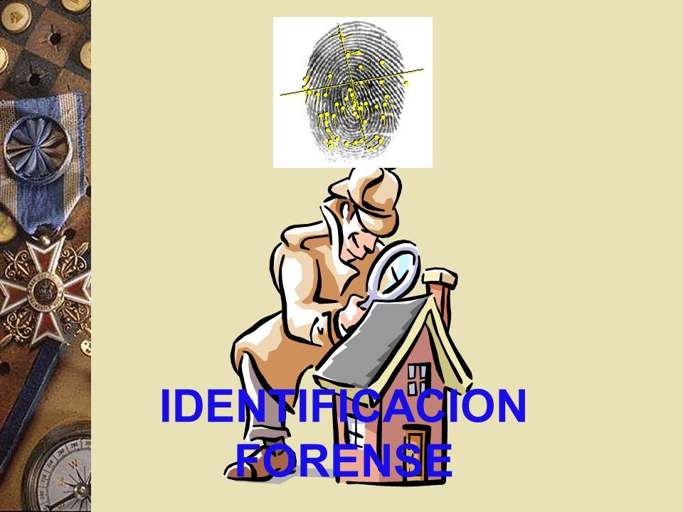 IDENTIFICACION FORENSE