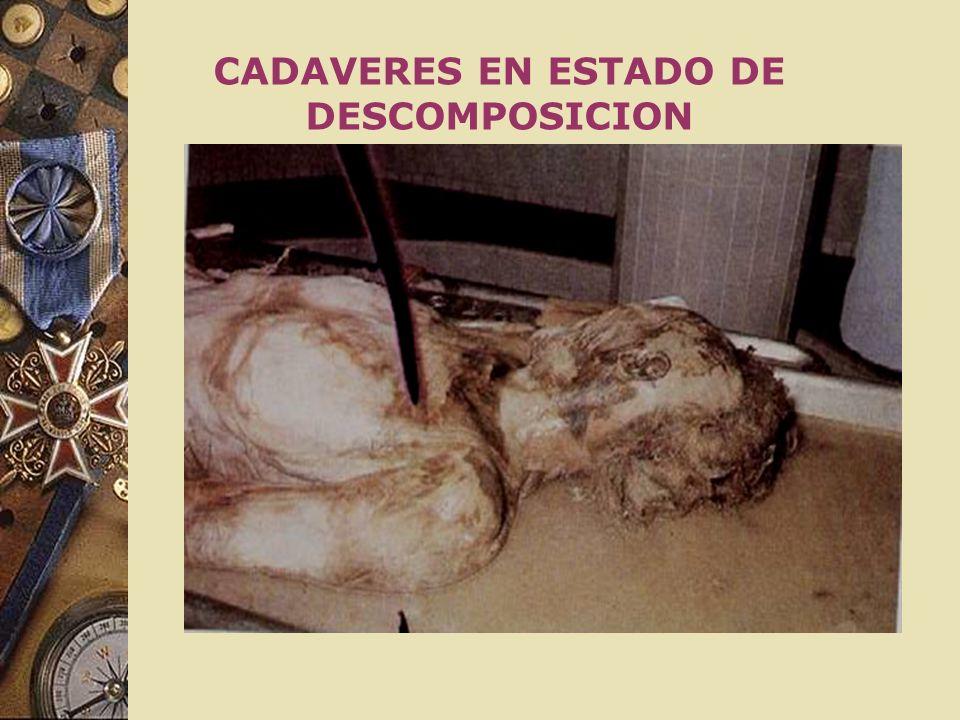 CADAVERES EN ESTADO DE DESCOMPOSICION