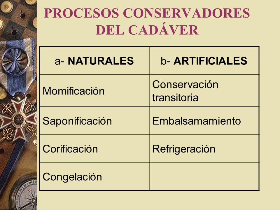 PROCESOS CONSERVADORES DEL CADÁVER
