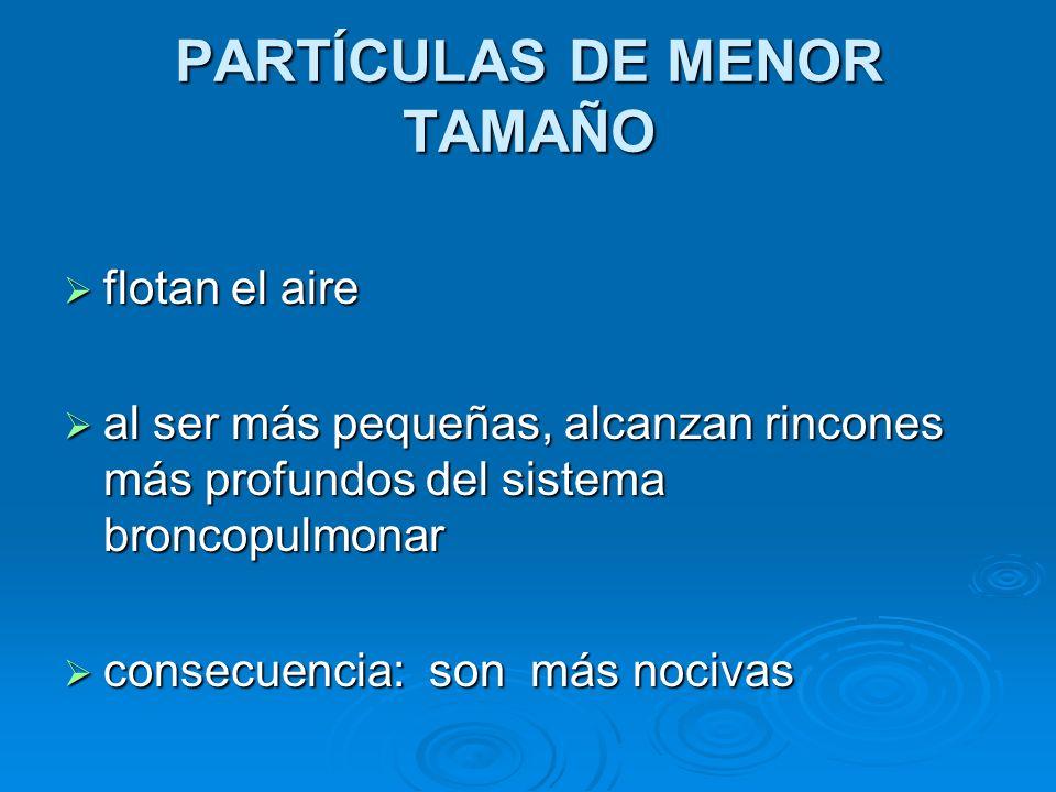 PARTÍCULAS DE MENOR TAMAÑO
