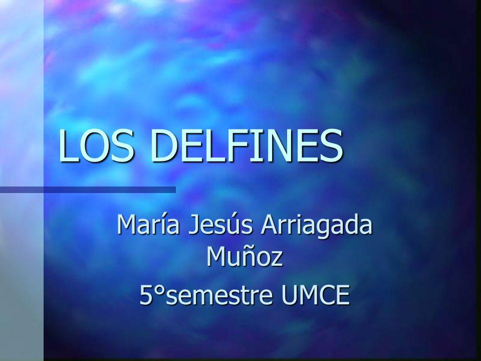 María Jesús Arriagada Muñoz 5°semestre UMCE