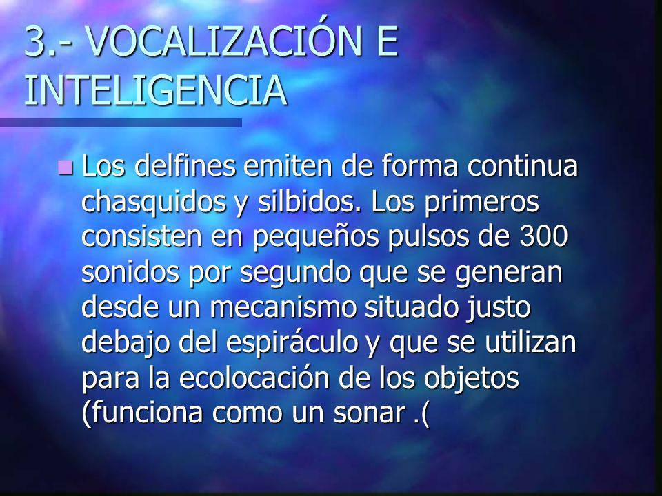 3.- VOCALIZACIÓN E INTELIGENCIA