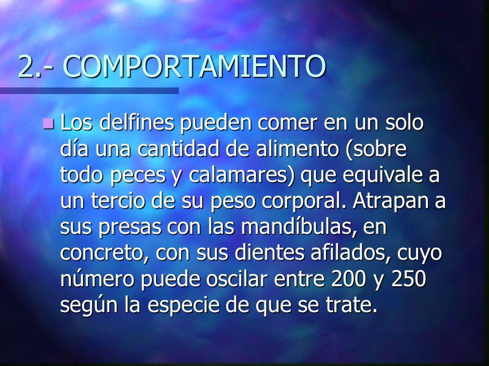2.- COMPORTAMIENTO