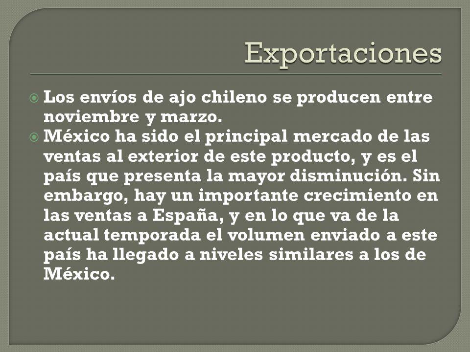 Exportaciones Los envíos de ajo chileno se producen entre noviembre y marzo.