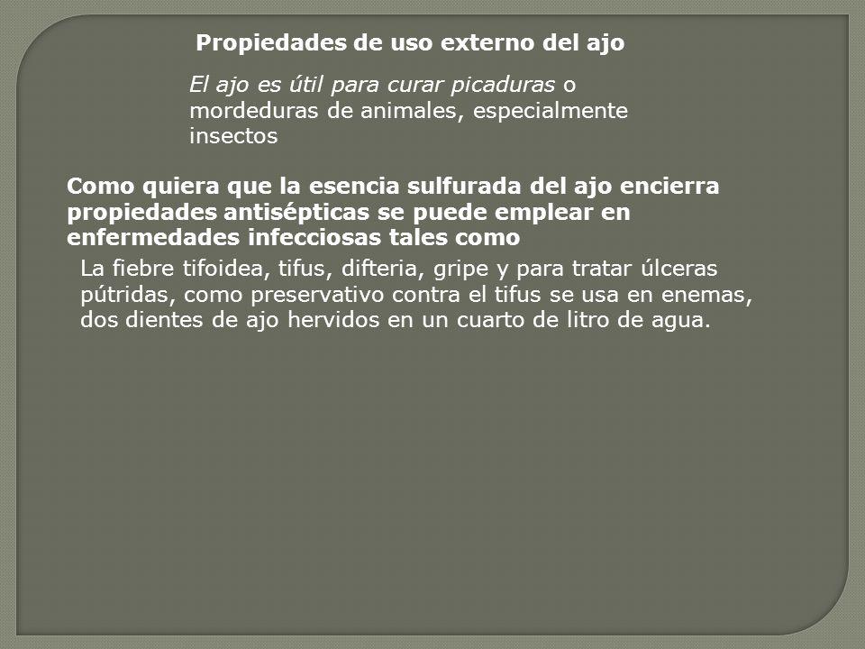 Propiedades de uso externo del ajo