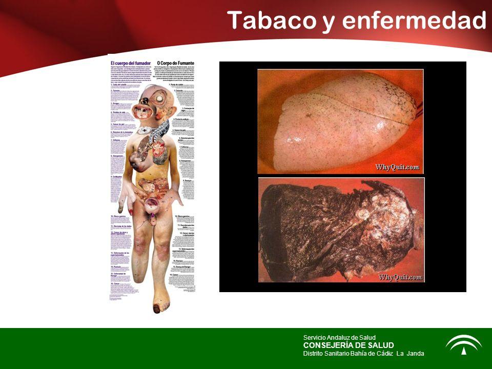 Tabaco y enfermedad CONSEJERÍA DE SALUD Servicio Andaluz de Salud