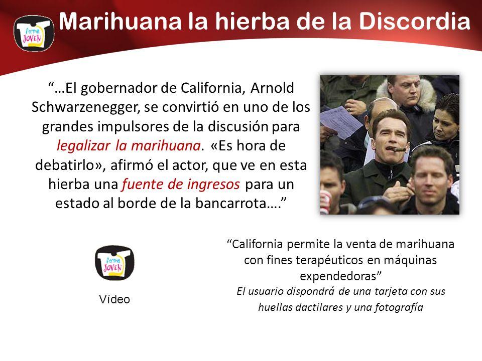 Marihuana la hierba de la Discordia