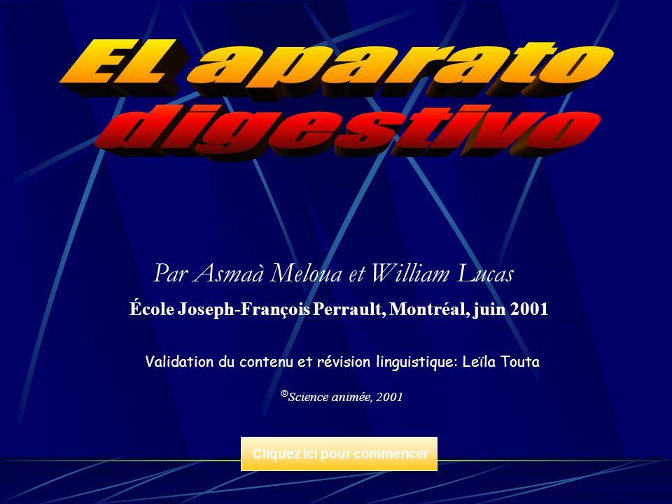 École Joseph-François Perrault, Montréal, juin 2001