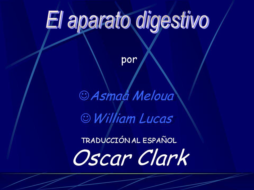 Oscar Clark El aparato digestivo Asmaà Meloua William Lucas por
