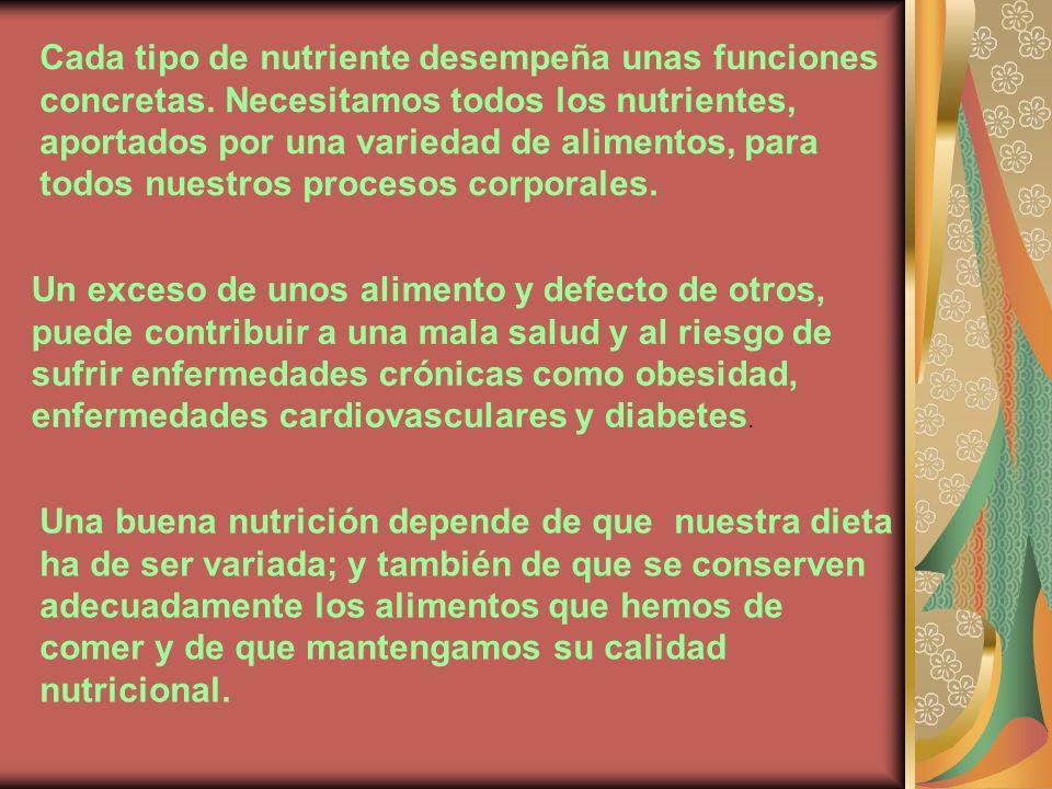 Cada tipo de nutriente desempeña unas funciones concretas