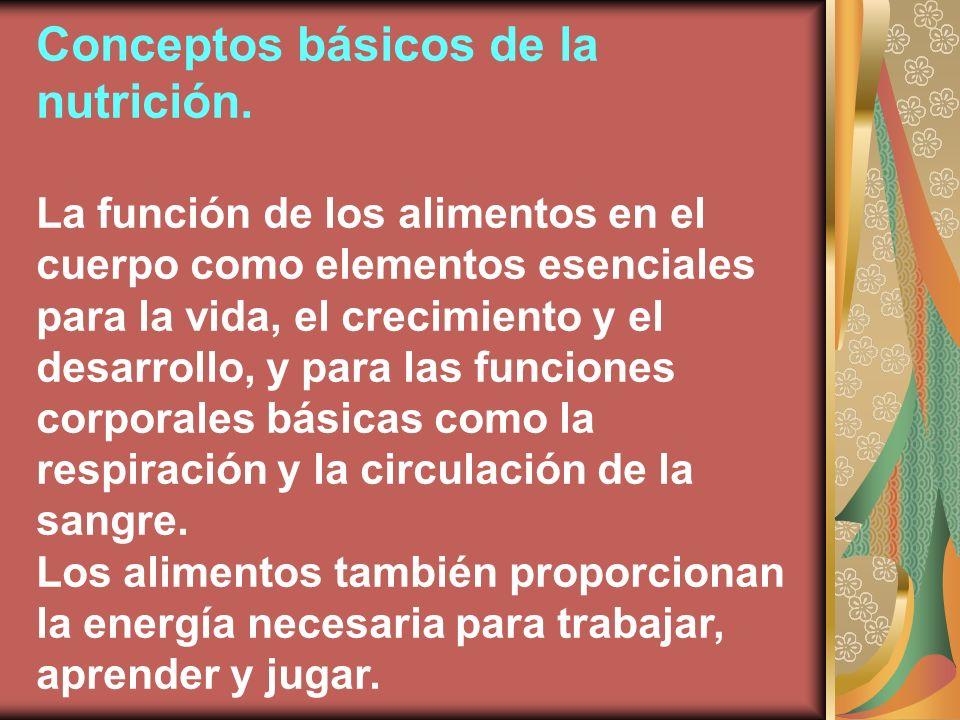 Conceptos básicos de la nutrición.