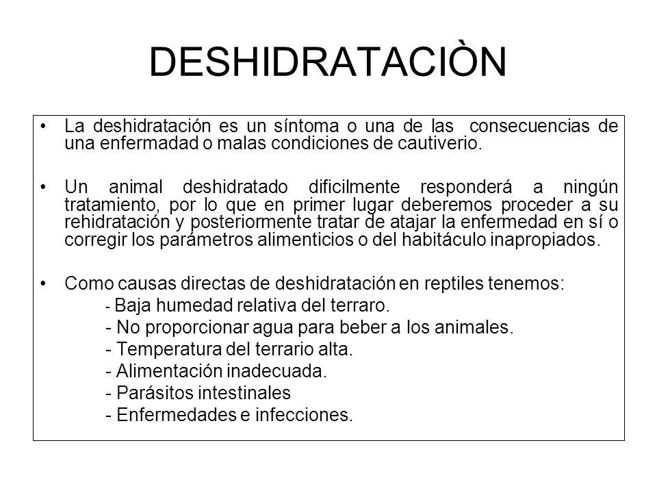 DESHIDRATACIÒN La deshidratación es un síntoma o una de las consecuencias de una enfermadad o malas condiciones de cautiverio.