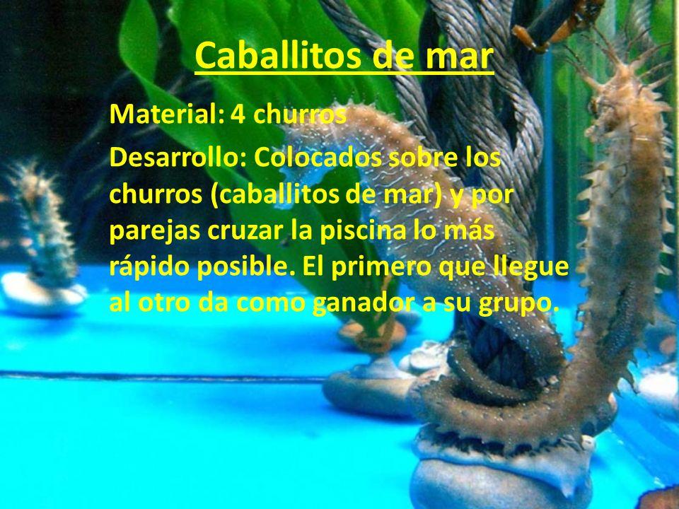 Caballitos de mar Material: 4 churros