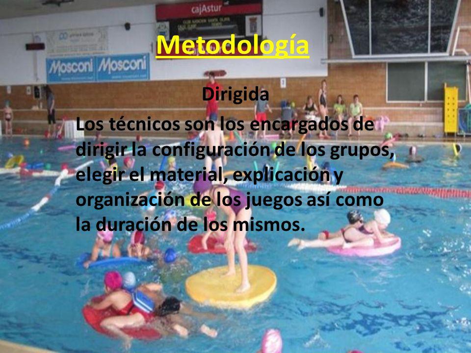 Metodología Dirigida.