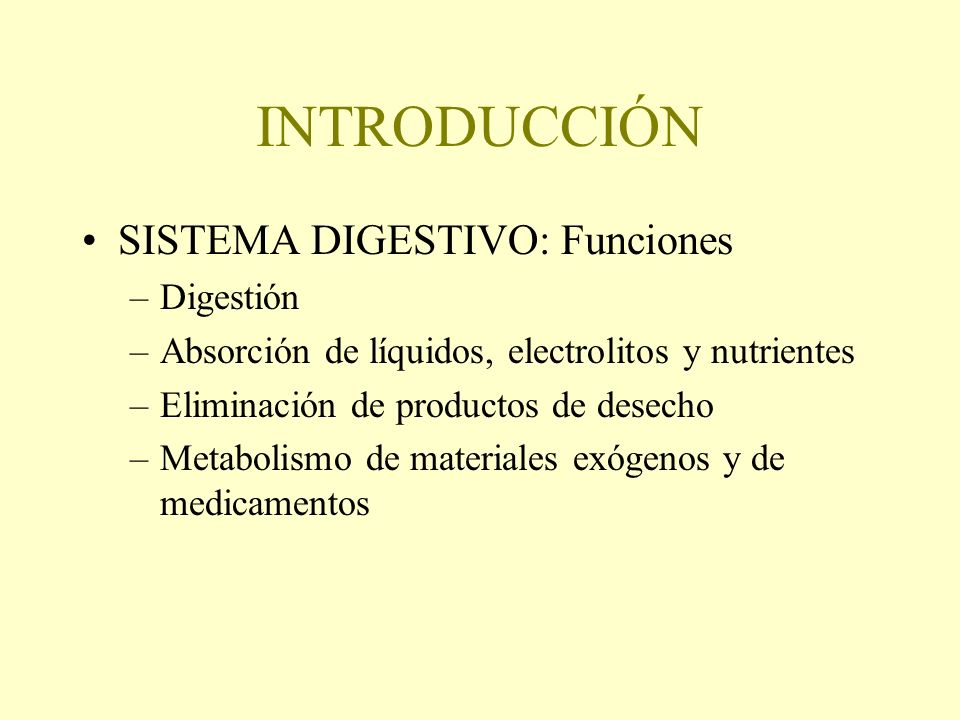 INTRODUCCIÓN SISTEMA DIGESTIVO: Funciones Digestión