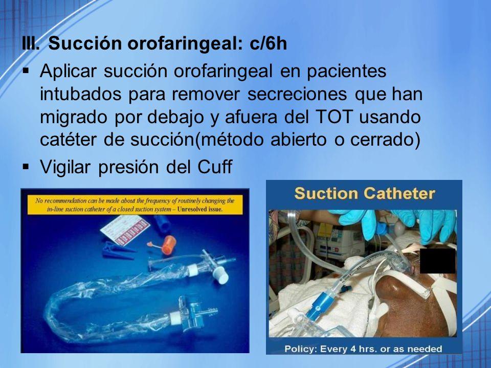 III. Succión orofaringeal: c/6h