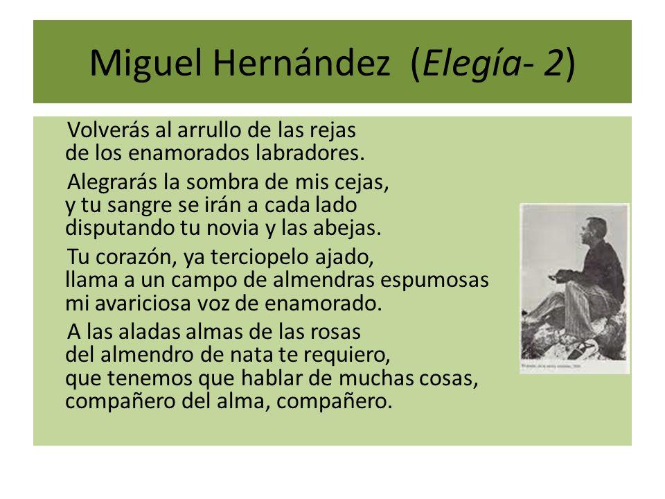 Miguel Hernández (Elegía- 2)