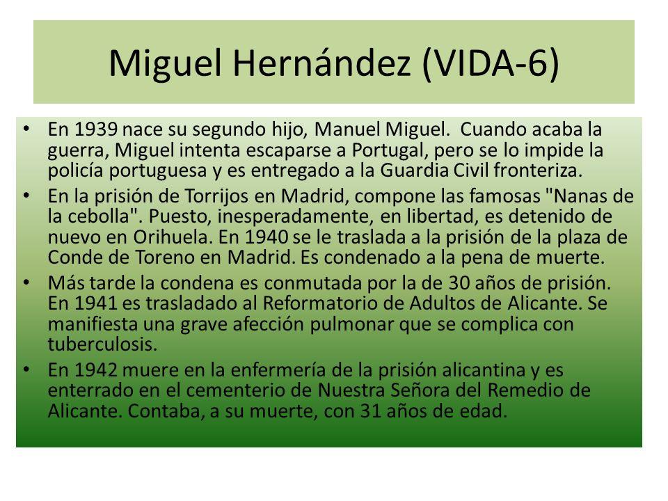Miguel Hernández (VIDA-6)