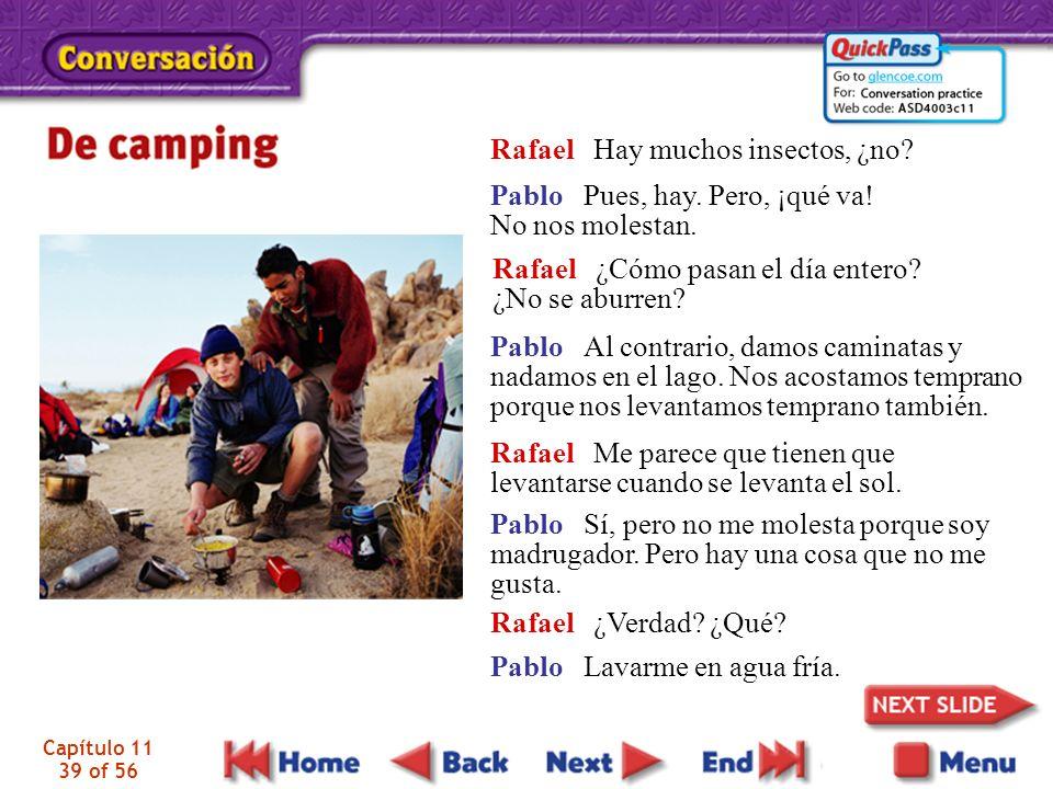 Rafael Hay muchos insectos, ¿no