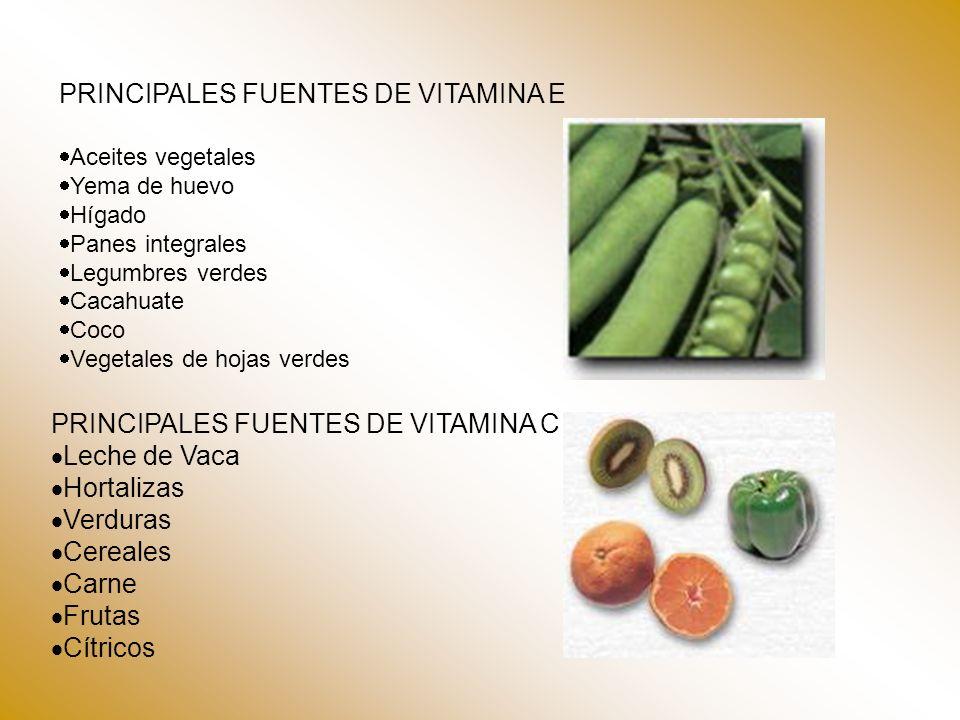 PRINCIPALES FUENTES DE VITAMINA E