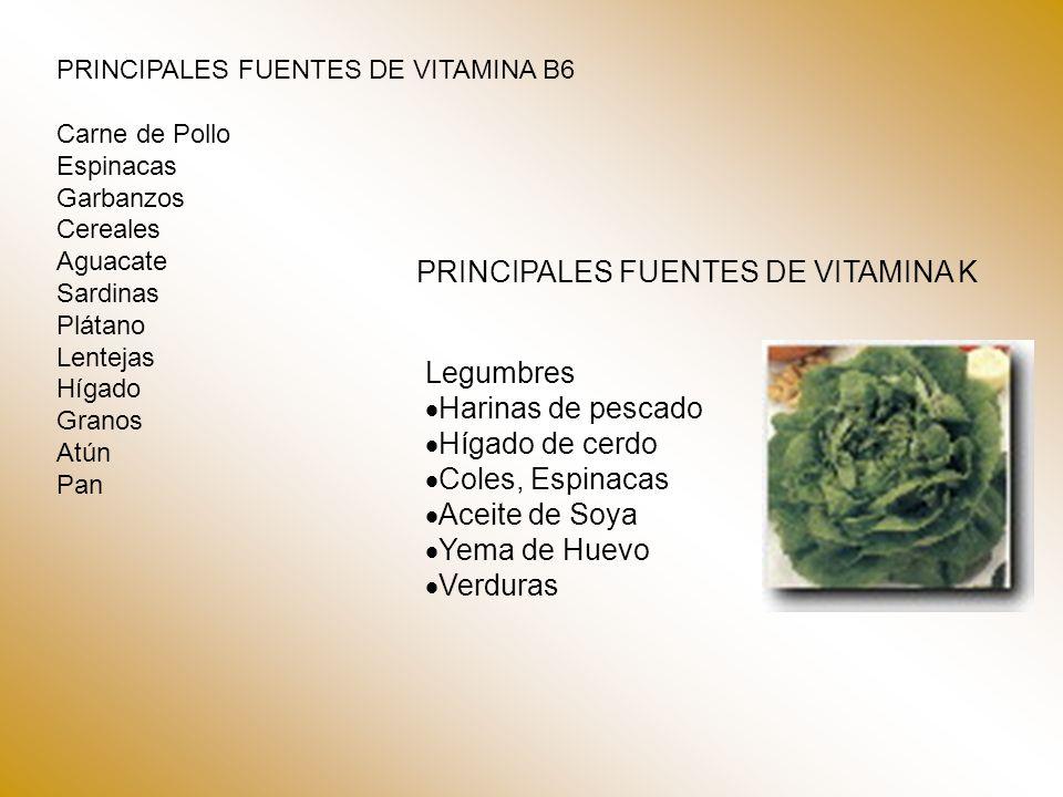 PRINCIPALES FUENTES DE VITAMINA K