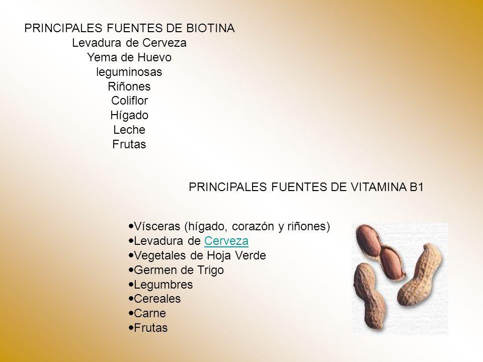 PRINCIPALES FUENTES DE BIOTINA