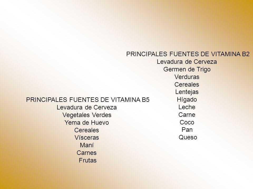 PRINCIPALES FUENTES DE VITAMINA B2 Levadura de Cerveza Germen de Trigo