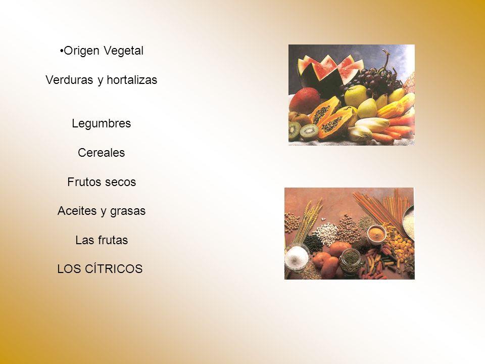 Origen Vegetal Verduras y hortalizas. Legumbres. Cereales. Frutos secos. Aceites y grasas. Las frutas.