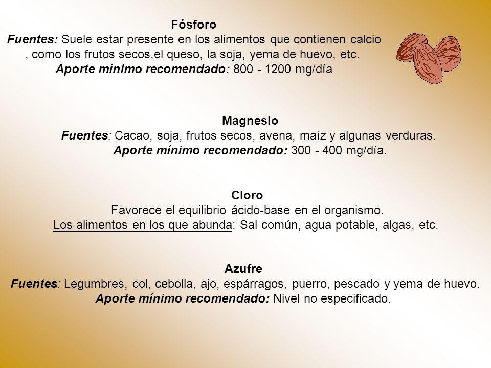 Instituto tecnologico superior de calkini en el estado de campeche ppt descargar - Alimentos que contienen silicio ...